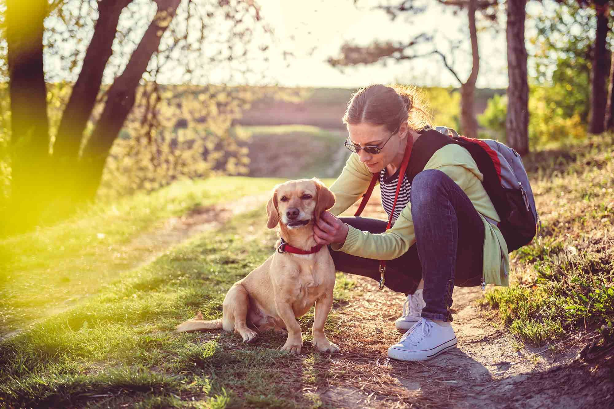 Ticks and pets don't mix when it comes to keeping your pet safe outdoors